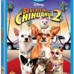 Disney's Beverly Hills Chihuahua 2 on DVD/Blu-ray Today! 2/1/2011