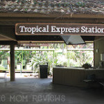 Maui Tropical Plantation & Country Store Review