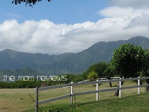 Oahu Excursions: Kualoa Ranch Tour Review