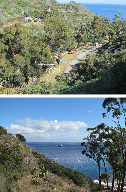 Catalina Island: Zipline Eco Tour Adventure Review