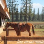 Lana'i, Hawaii Western Adventures: Horseback Riding with Cowboy Cody