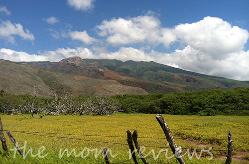 Molokai, Hawaii Through Our Eyes: Day Trippin' Around the Island