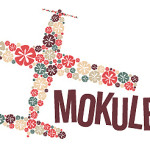 Hawaii Travel:  Island Hopping with Island Air and Mokulele Airlines