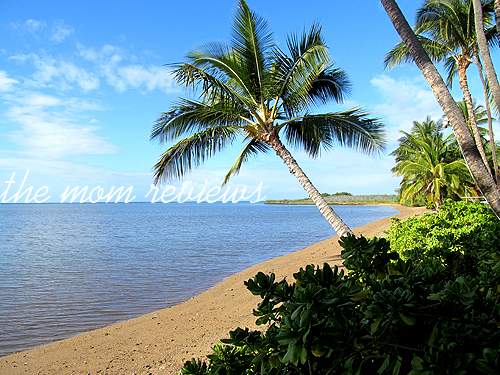 Molokai, Hawaii: Hotel Molokai & Hula Shores Restaurant Review