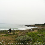 Cambria, CA:  Moonstone Beach, A Photostory