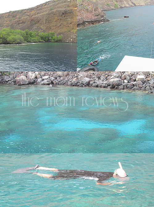 Kona, Hawaii, Fair Wind II Afternoon Snorkel Cruise, Cruise Kona, Hawaii Cruises, Big Island Cruises, #BigIsland, #Hawaii