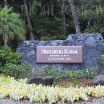 Big Island, Hawaii: Sheraton Kona Resort and Spa Review