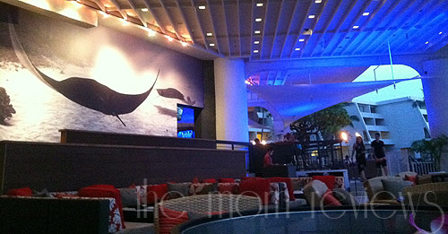 Kona coast dining with a view ray 39 s on the bay the mom - Lecteur blue ray mural ...