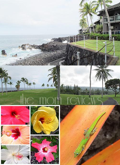 kanaloa, Big Island, Hawaii, Outrigger Kanaloa at Kona Condo Review, Kona, Where to Stay Kona, Outrigger Resorts, Hawaii Resorts, #Hawaii, #BigIsland