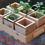 ThinkEco2 Wood Planter Boxes