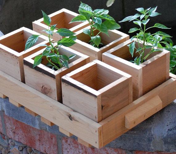 Ящики из дерева  для рассады