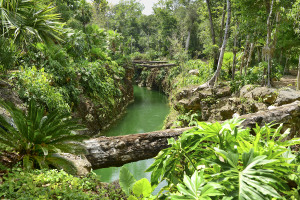 Cenote K'aak, Cancun, Mexico, Top 10 Kid-friendly Activities, #Cancun, #Mexico