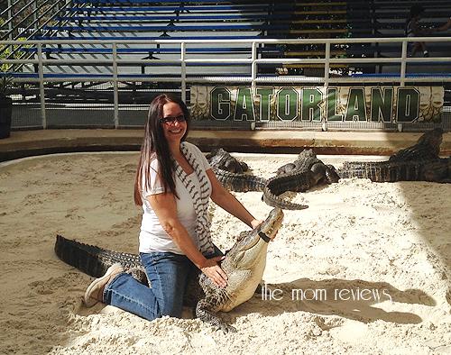 Gatorland, Kissimmee, Orlando, Florida, #Gatorland, wrestling a gator, sitton on a gator,