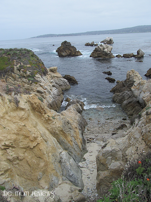 #Monterey Bay, Point Lobos, Hwy 1, Big Sur #Tentacles, Monterey Bay