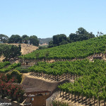 A Taste of Tuscany in Napa:  The Meritage Resort and Spa