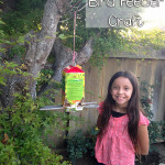 Easy Carton Bird Feeder Craft