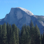 Family Activities to Enjoy on a Day Trip to Yosemite