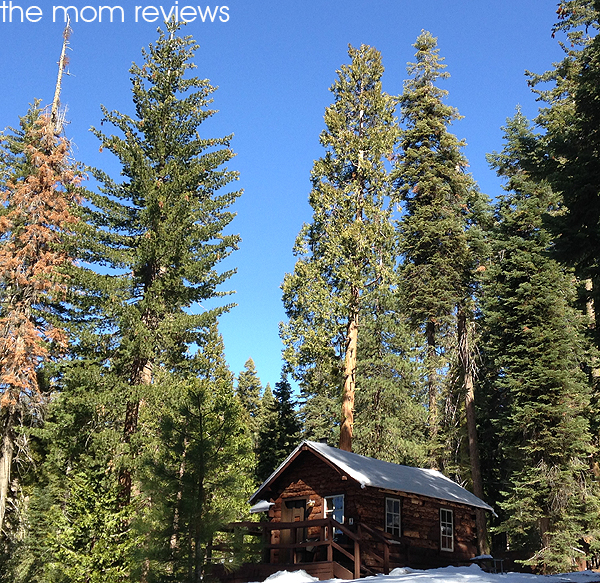 Kings Canyon National Park: John Muir Lodge @VisitSekiParks