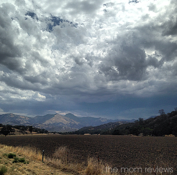 Cloud 9 Living: Best of Both Worlds with Santa Barbara Wine Country Cycling Tours
