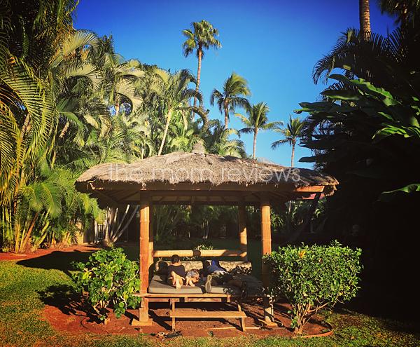 My Favorite Maui Vacation Photos