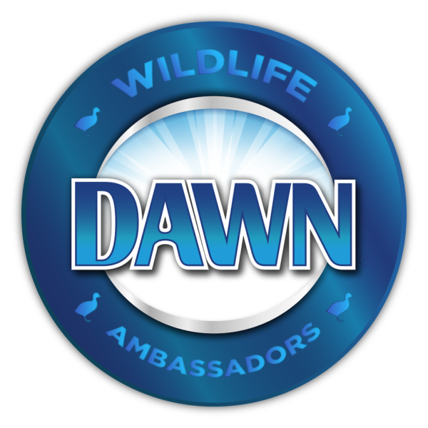 Dawn Wildlife Ambassador