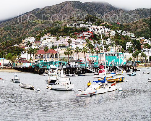 Visit Santa Catalina Island Jen Is On
